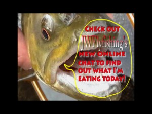 jwflyfishing chat pic 300x225 New Chat feature on JWFlyfishing!